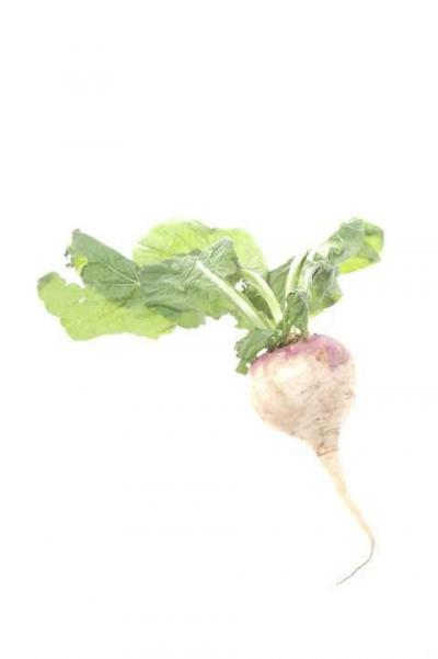 A Bitter Turnip