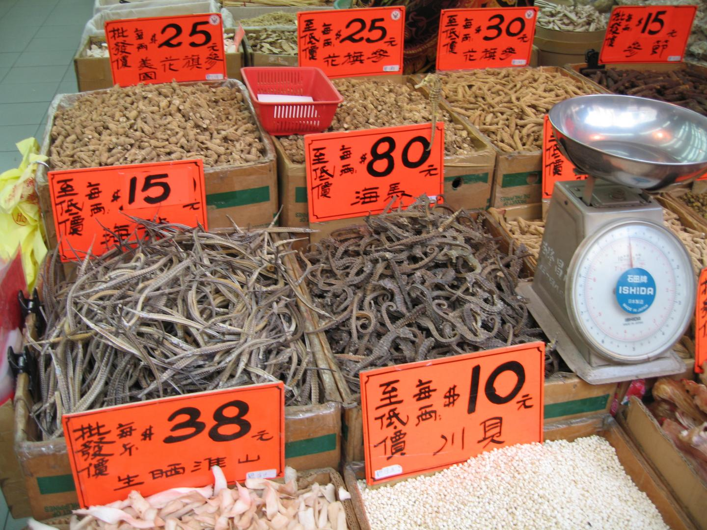 Dried Pipefish and Seahorses on Sale in Hong Kong