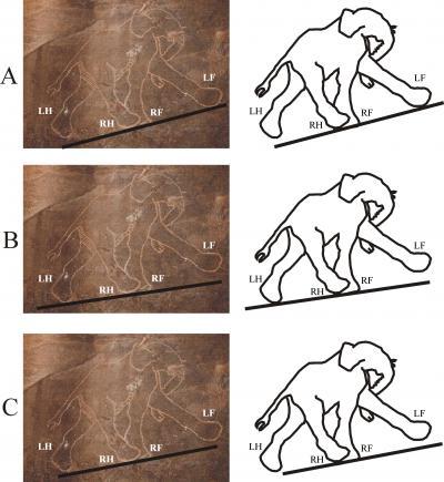 A Prehistoric Elephant Depiction