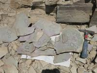 Slabs with Fossils Circled