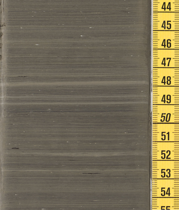Annually layered sediments from Lake Suigetsu