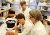 Researchers Examine the Small-RNA