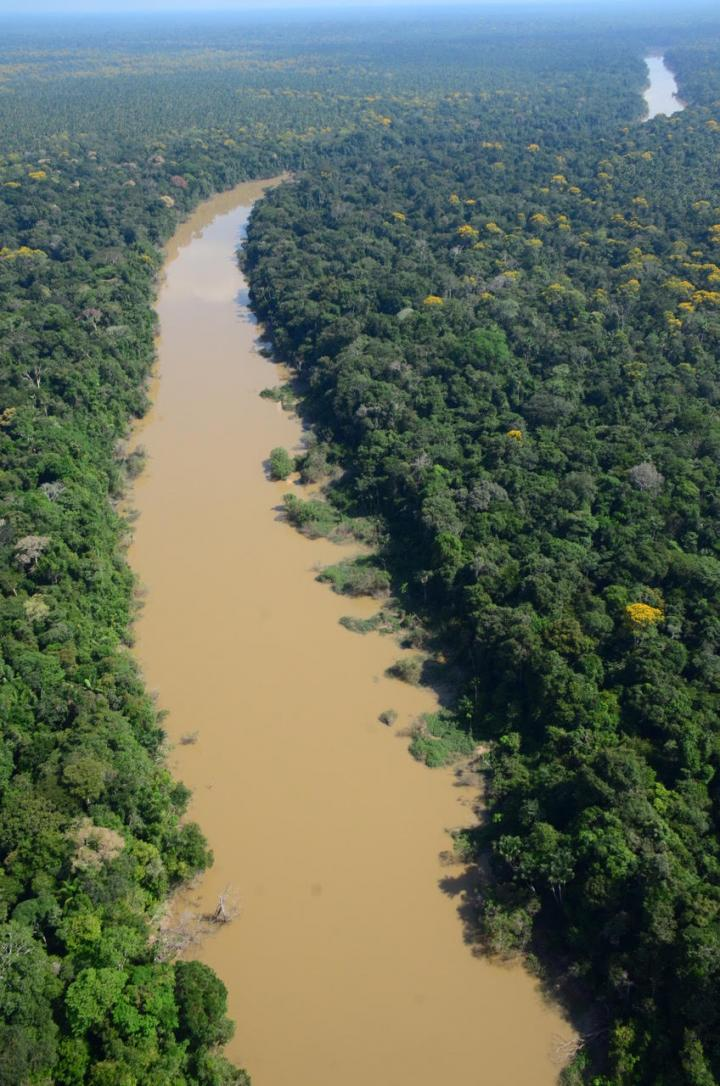 An aerial photo of the Algodón River flowing through a forest of the Amazon Basin in the remote northeastern corner of Peru