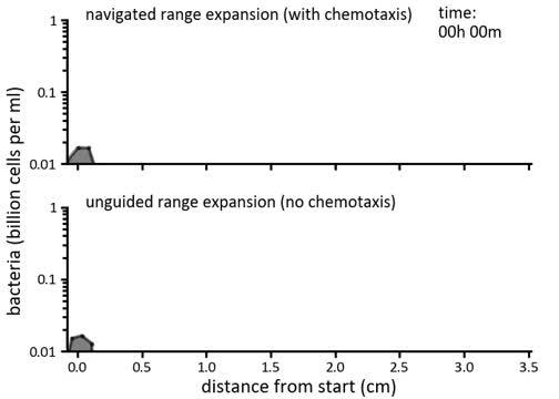 Navigated and Unguided Modes of Population Expansion