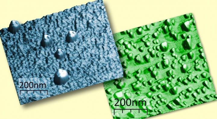 Microscopic Images of the Europium Silicide Nanoislands on the Silicon Surface