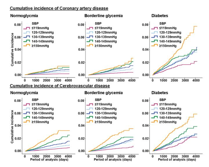 Rates of CAD and CVD