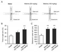 Matcha Reduced Anxious Behavior in Mice