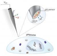 Double-Barrel Nanoprobe