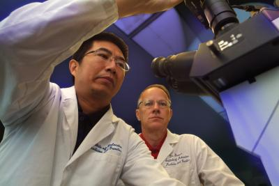 Drs. Quan-guang Zhang, Darrell Brann, Georgia Health Sciences University