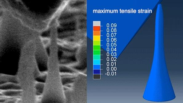 Nanoscale Diamond Needles
