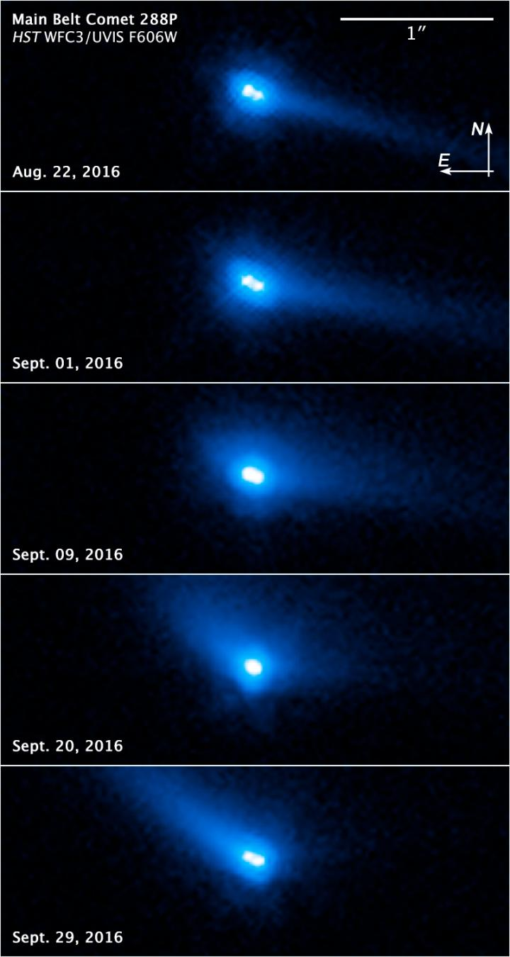 Asteroid or Comet? Both.