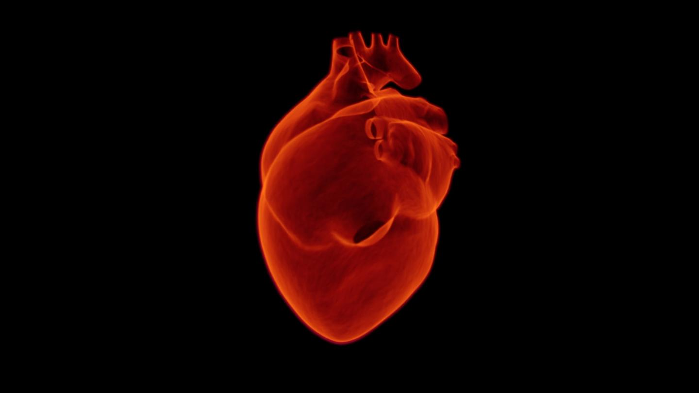 Heart Failure Patients in UK Do not Receive the Long-Term Care they Need