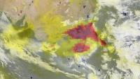 Aerosols from Australian Bushfires