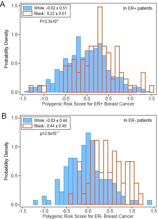 Black vs White ER+ and ER- Breast Cancer