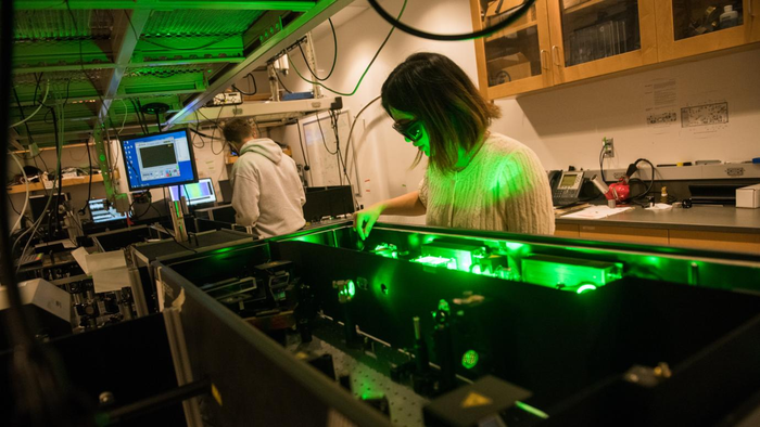 NSF announces $25 million institute in Chicago for quantum biology research
