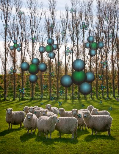 Sheep in a Field Surrounded by Methane Molecules