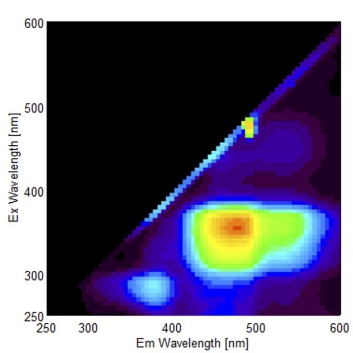 Fluorescence fingerprint of amyloid-containing bovine liver homogenate
