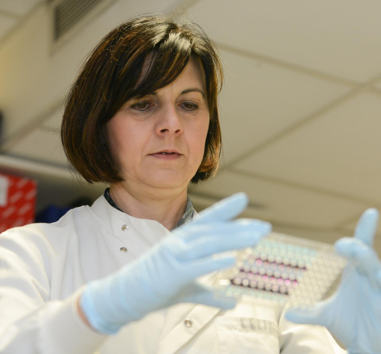 Tatjana Crnogorac-Jurcevic, Pancreatic Cancer Research Fund