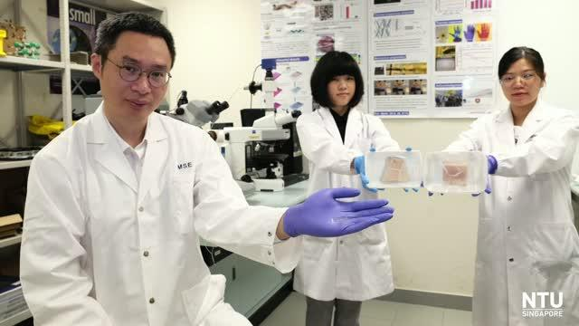 NTUsg scientists develop AI-powered electronic nose to sniff out meat freshness
