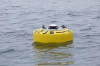 Global Buoy on Surface