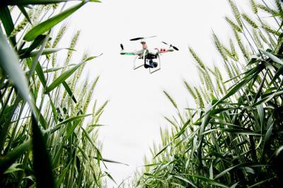 Drone on the Farm