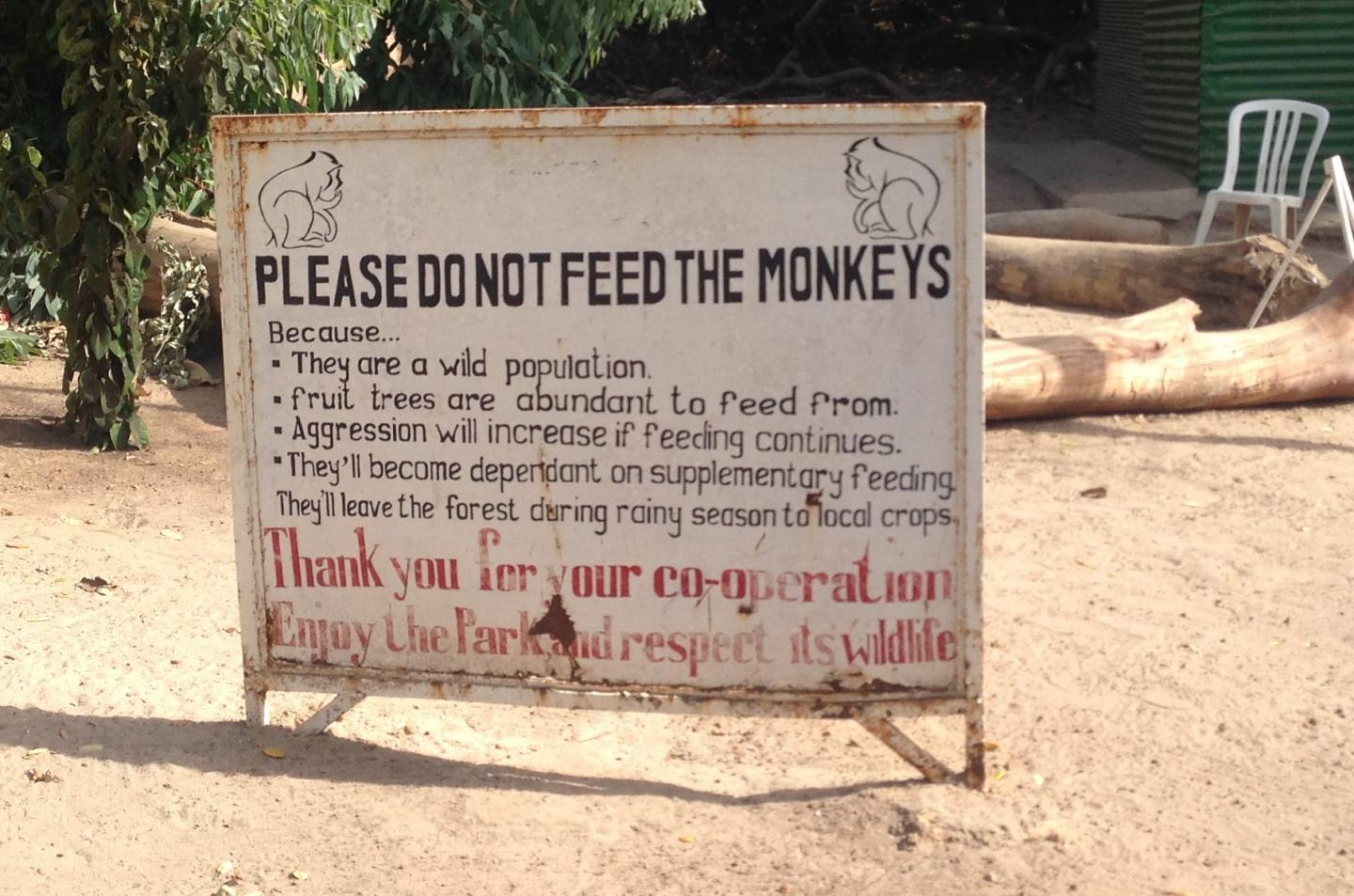 Monkey Sign in The Gambia