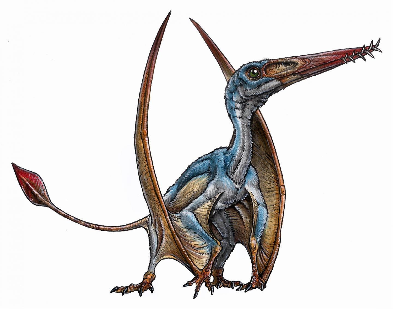 Ptesosaur