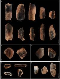 Burned Animal Bones from Qesem Cave