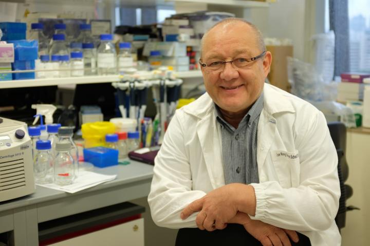 Professor Sven Pettersson from the National Neuroscience Institute of Singapore led the research team in this discovery.