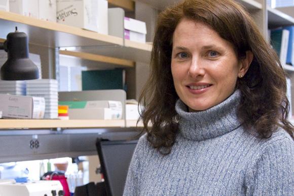 Virginia Borges, MD, MMSc, University of Colorado Anschutz Medical Campus