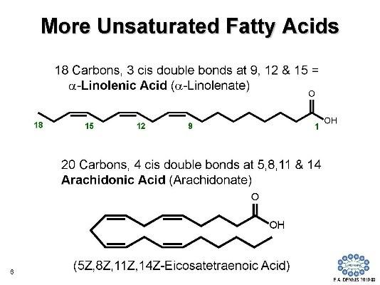 More Unsaturated Fatty Acids