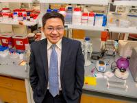 Tony Hu, PhD