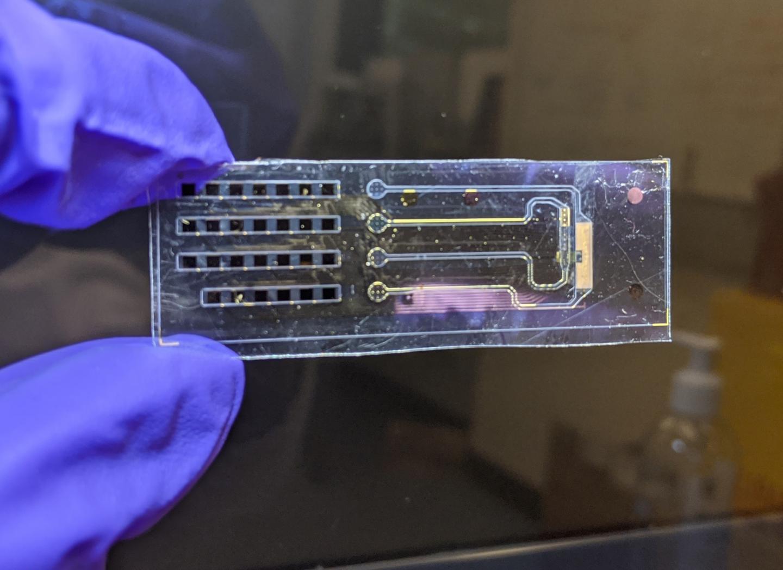 Bioelectronic device