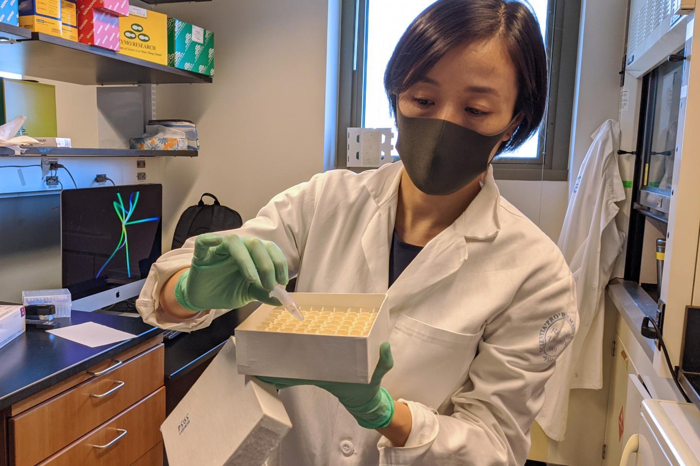 Scientist investigating COVID-19 causes