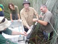 Coring in Duck Lagoon (2 of 2)