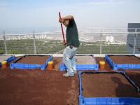 Israel's First Green Roofs Ecology Research Center, University of Haifa