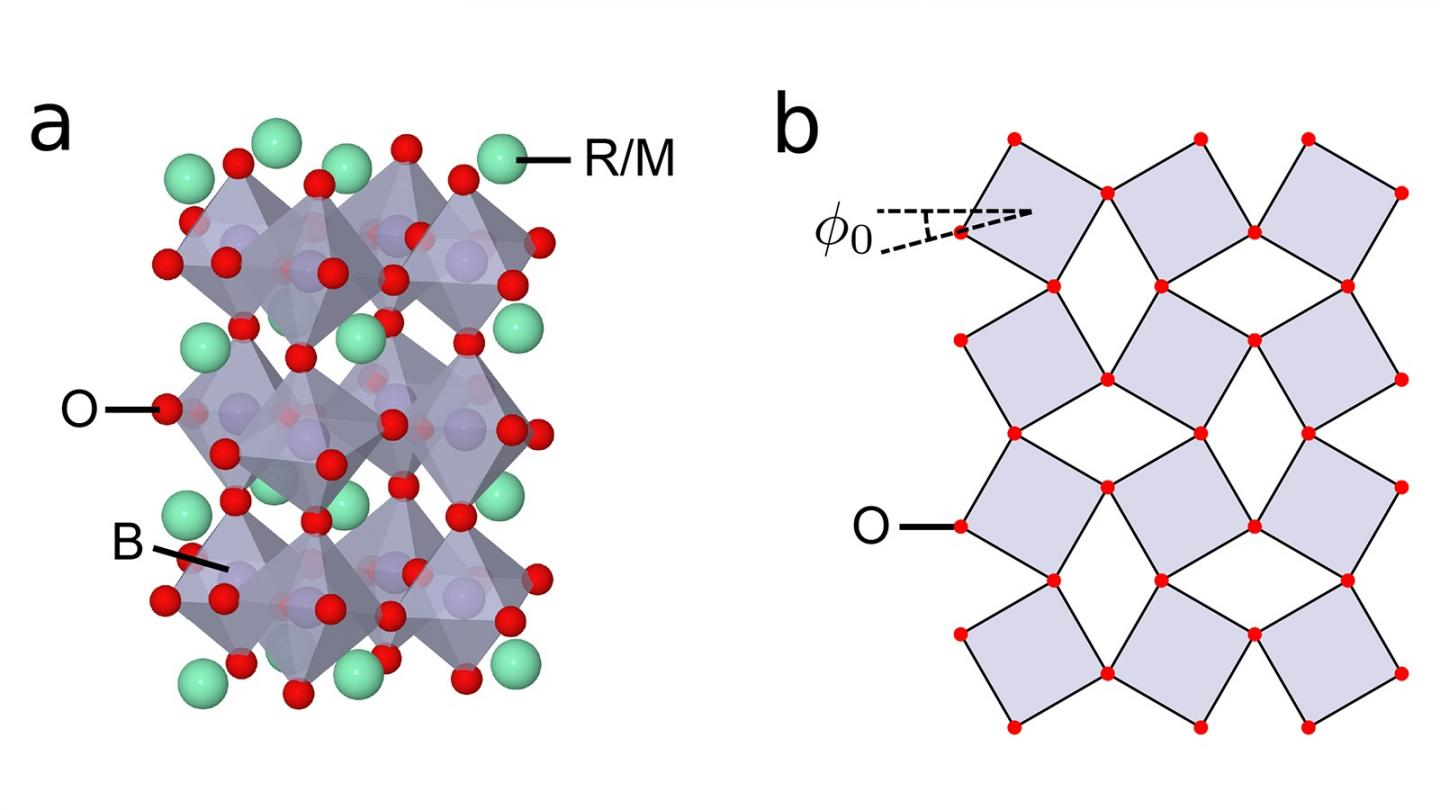 Structure of Perovskite Transition Metal Oxides