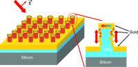 Schematic of Raman-Sensor Chip