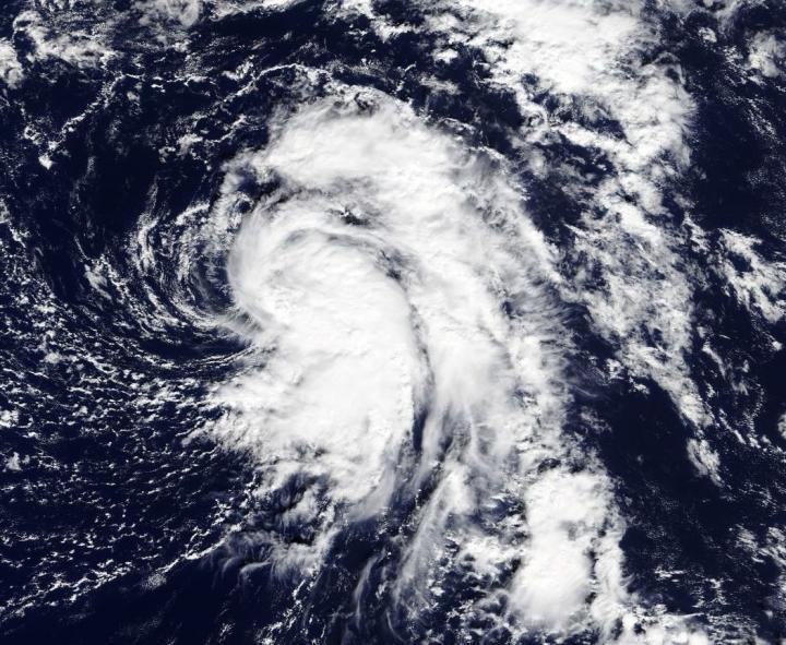 Terra Image of TD19