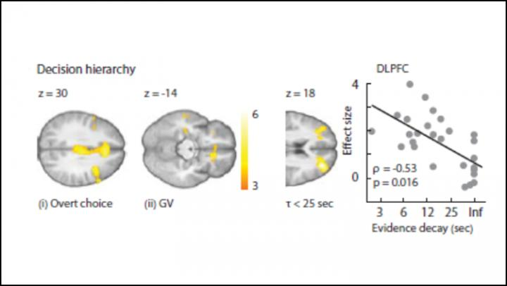 Happy Endings Trip Up the Brain's Decision-Making