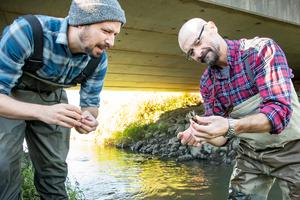 Researchers in creek