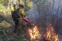 Fire Management 1 Horiz