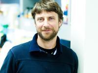 Nicholas Cosford, Ph.D., Sanford Burnham Prebys Medical Discovery Institute