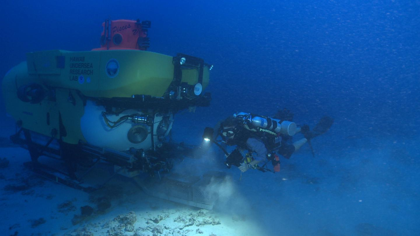 Diver and Submersible