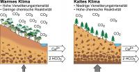 The 'reactivity' of the Land Surface