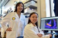 Meera Nair and Jessica Jang, University of California - Riverside
