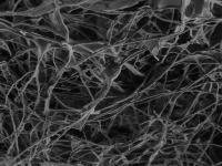 Nanotubes Scaffold (1 of 2)