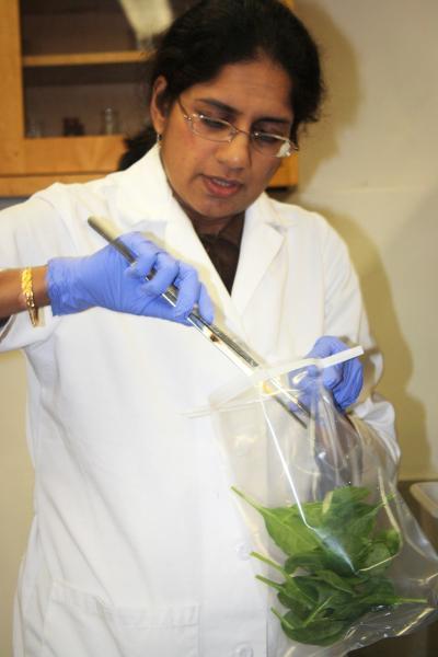 Saghana Ravishankar, University of Arizona