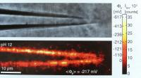 Optical Imaging Tool to Visualize Surface Chemistry in Real Time (2 of 2)