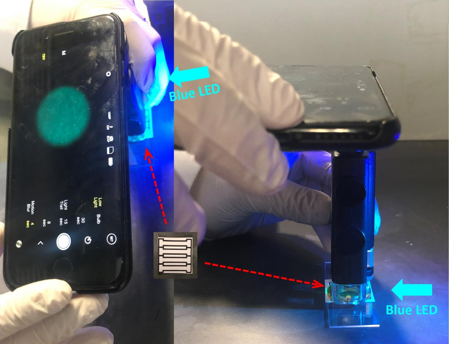 Smartphone-Based Device for Detecting Norovirus, the 'Cruise Ship' Microbe (Video)